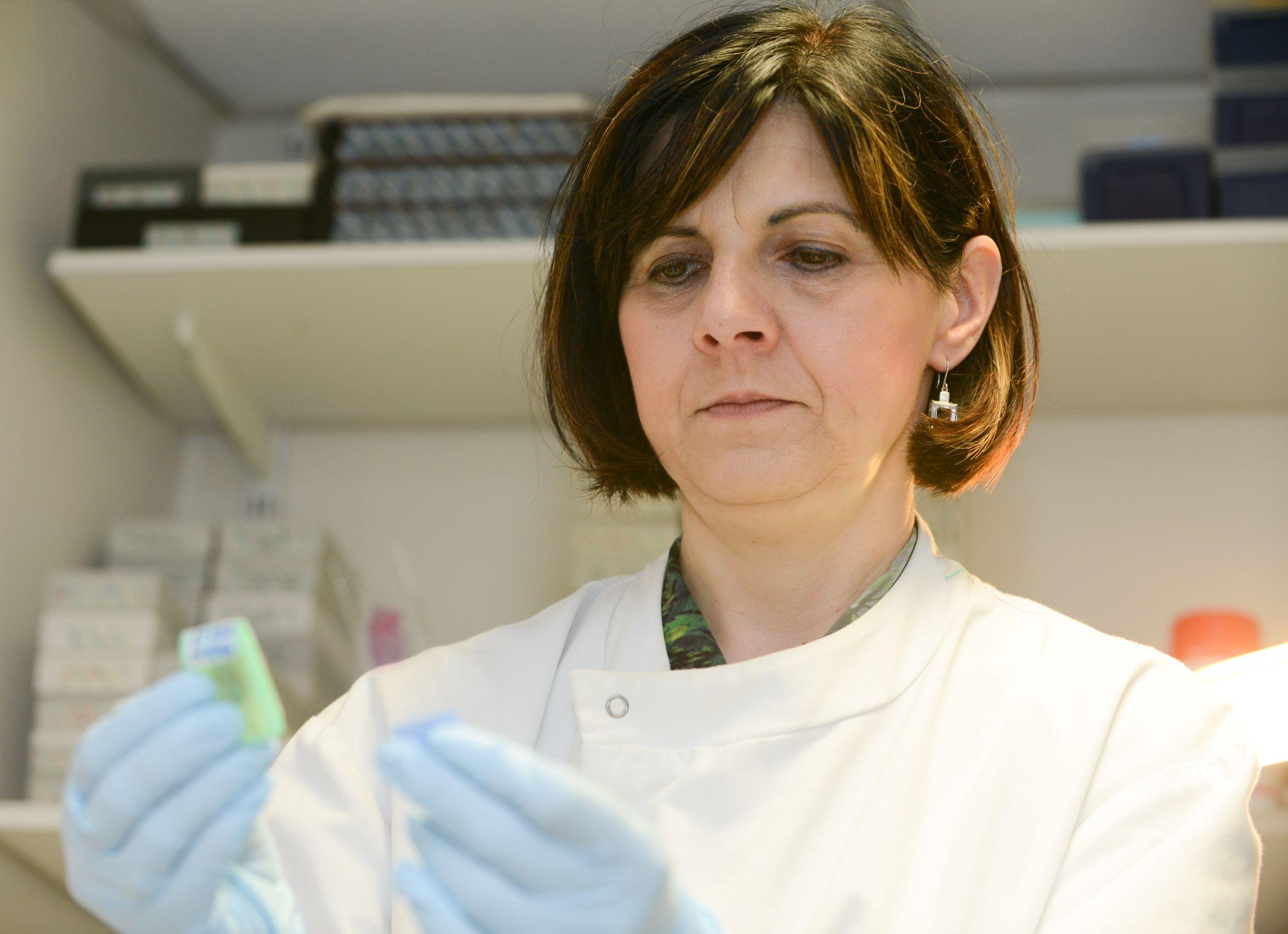 Professor Tatjana Crnogorac-Jurcevic