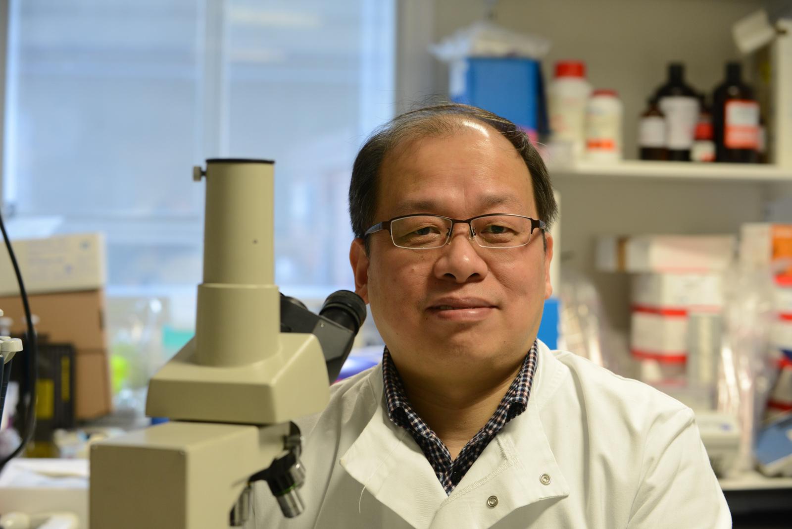 Professor Yaohe Wang