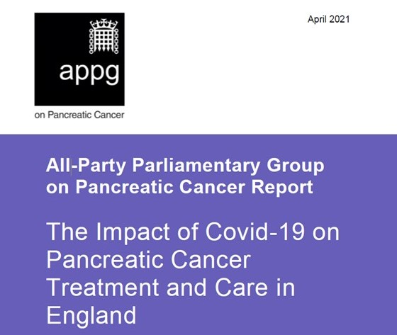 front cover of 2021 APPG report