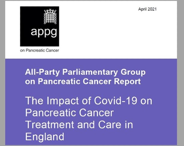 APPG report front cover